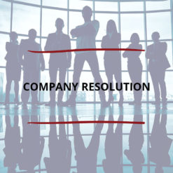 Company Resolution Saved For Web2