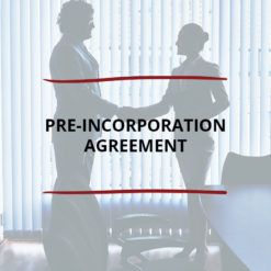 Pre Incorporation Agreement Saved For Web3