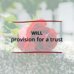 Will provision for a Trust Saved For Web